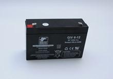 Banner Batterie GiV 6V-12Ah 5000011