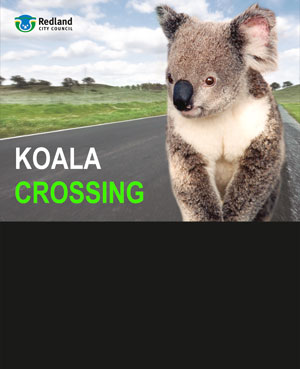 Front panel layout for Radar Speed Displays - koala crossing